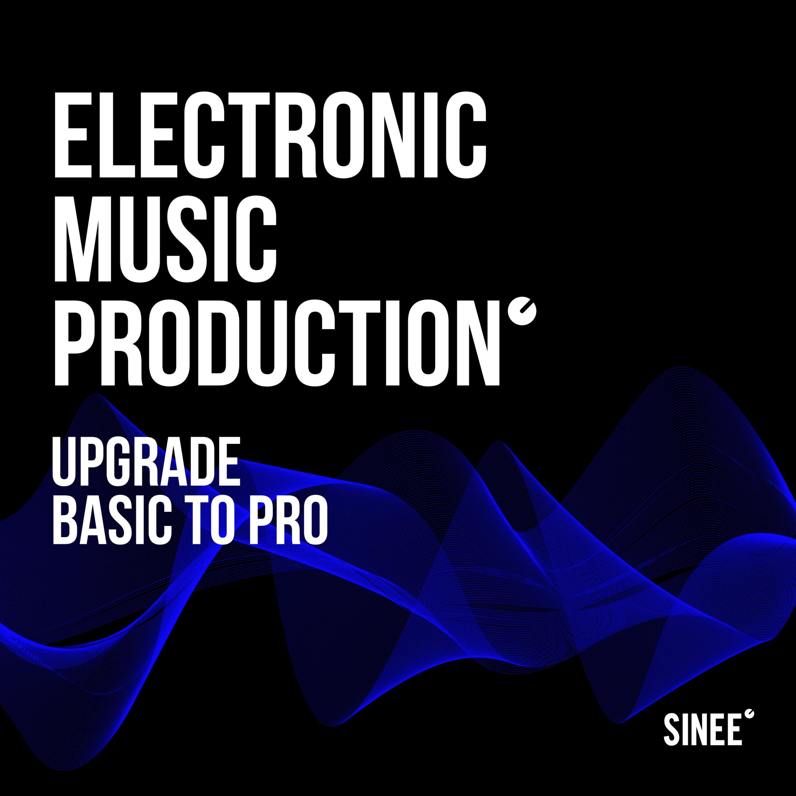 Upgrade: Basic auf Pro (Subscription)