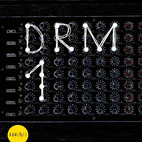 Raw Loops - DRM1 Drum Hits 1